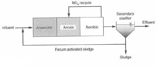 شکل 1. شماتیکی از فرآیند A2O